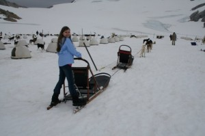 Becca and her dogsled