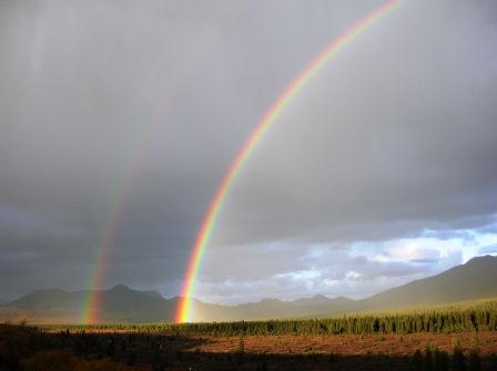 Denali Rainbows